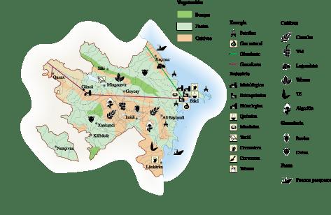 Azerbaijan Economic map